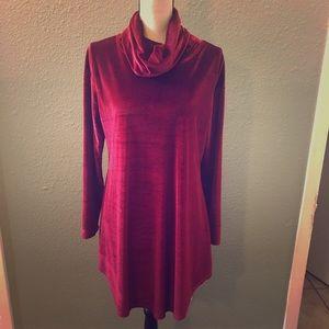 🎄4 for $40‼️ Reborn Red Velvet Tunic Size Large